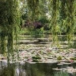 Monet's Gardens – If you are a flower lover don't miss this place.