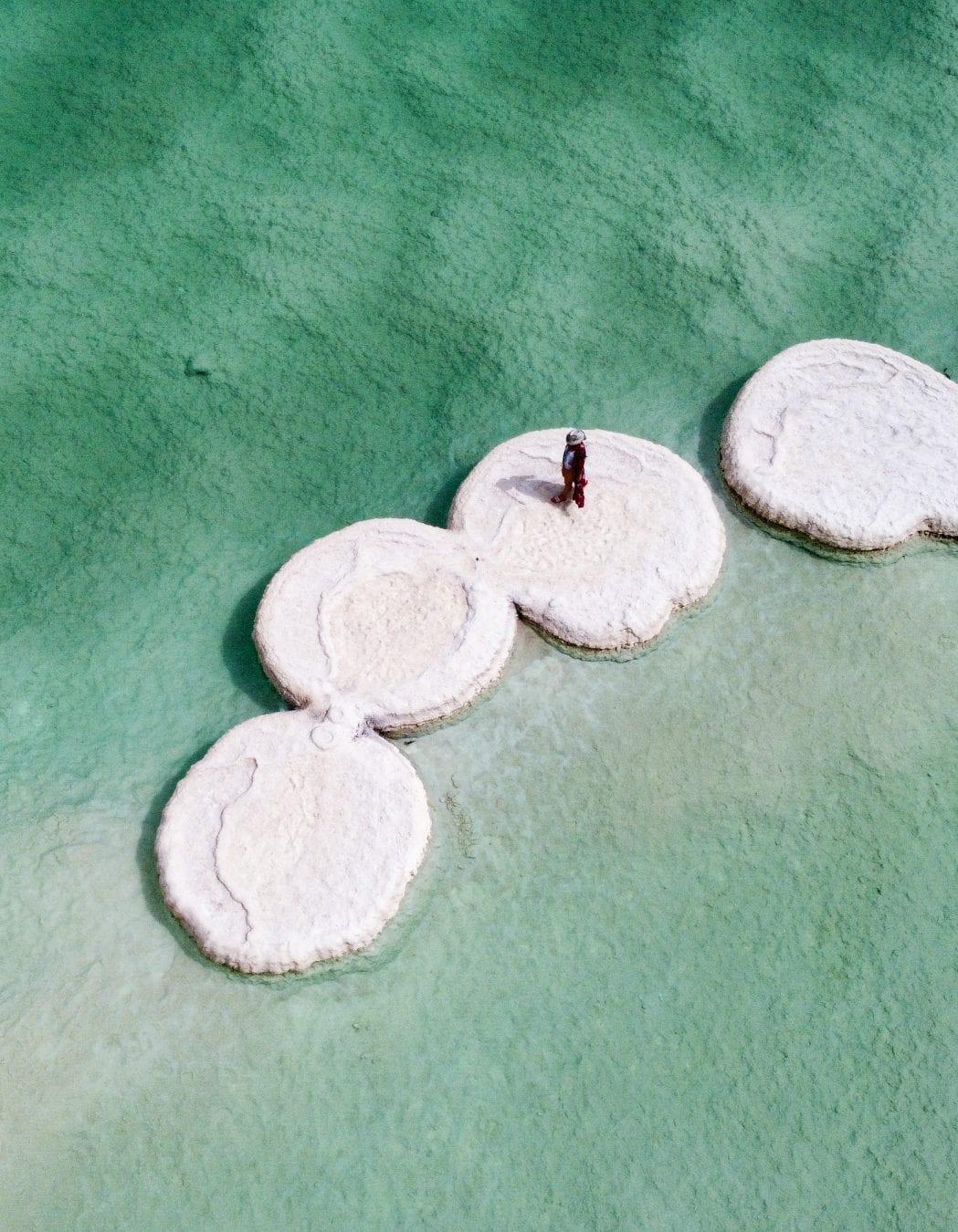 Dead Sea mushrooms Israel