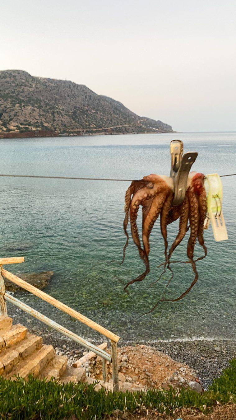 Domes of Elounda crete greece plaka village